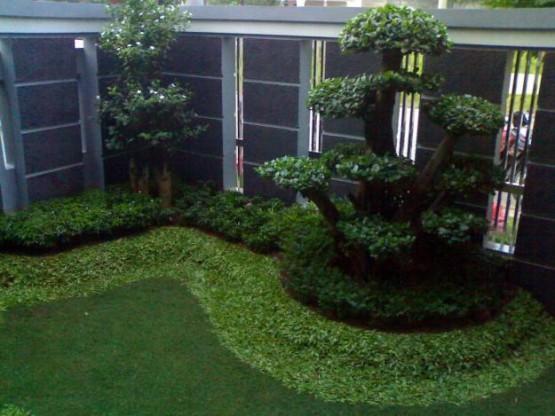 45 Desain Taman Belakang Lahan Sempit HD Terbaik